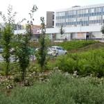 FOTO 2012 192